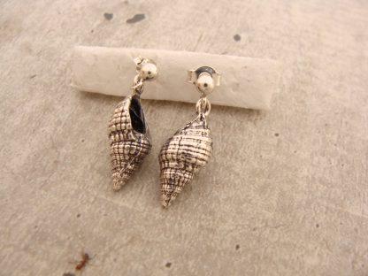 Sea Shell Earrings in Sterling Silver