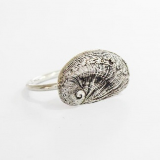 Sterling Silver Venus Ear Stack Ring