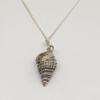 Sterling Silver Sea Shell Charm on Chain - Goldfish Jewellery Design Studio