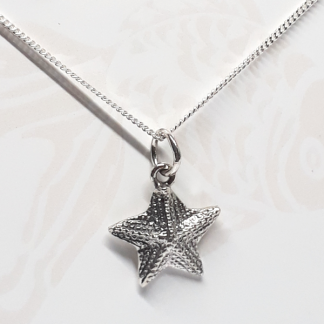 Sterling Silver Starfish Charm on Chain - Goldfish Jewellery Design Studio